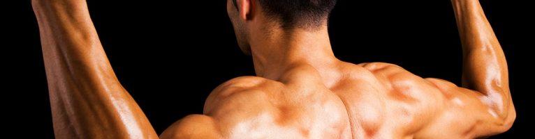 Entraînement de poitrine insensé pour vos gains